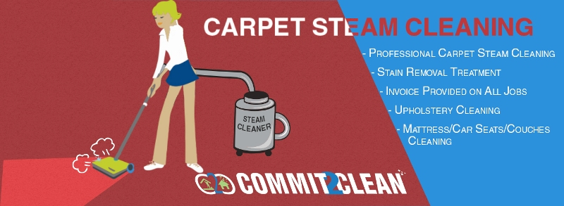 Professional Carpet Steam Cleaning Services