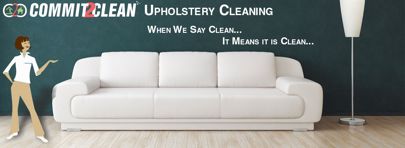 couch professional steam services best service portable cleaning affordable upholstery carpet cleaner