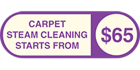 Professional Carpet steam Cleaning(5)